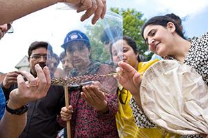 International Pakistani Students