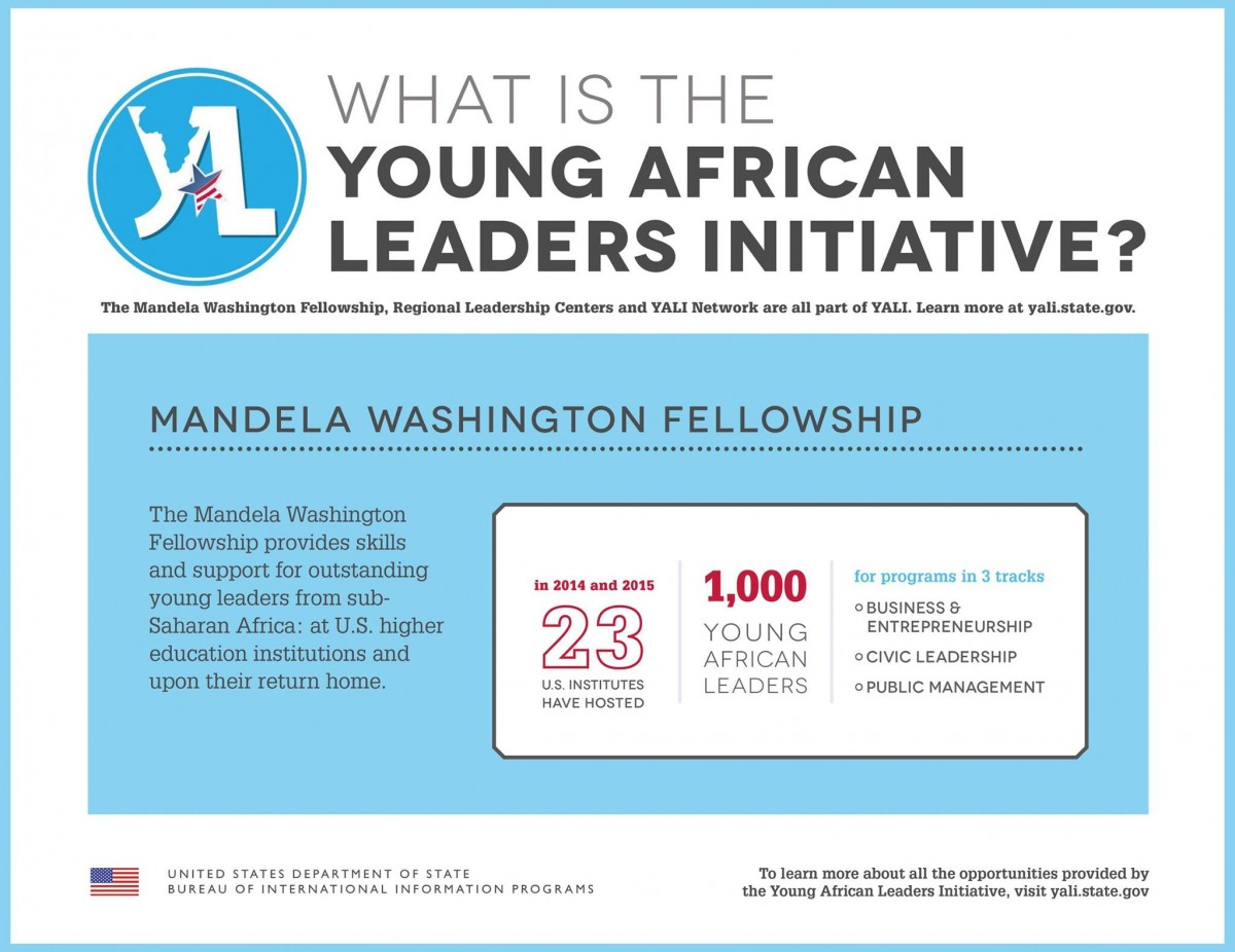 What is the Young African Leaders Initiative graphic