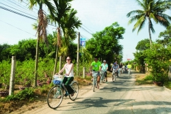 A bike ride around the rice fields in Svay Rieng province, Cambodia.